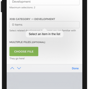 WP Job Manager Field Editor HTML5 Required Validation iPhone Select an Item